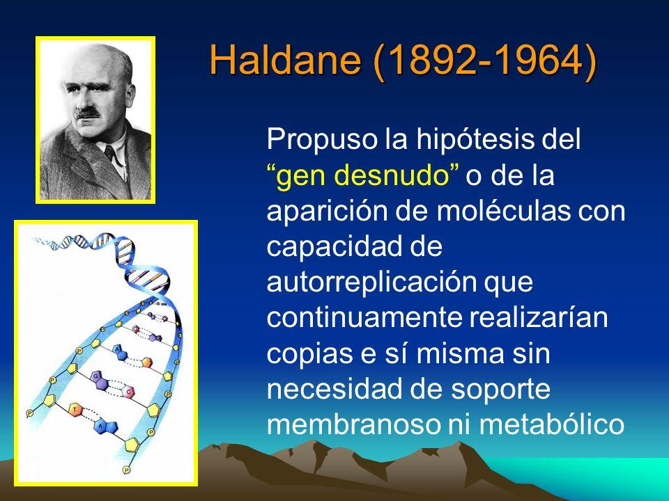 Haldane (1892-1964)