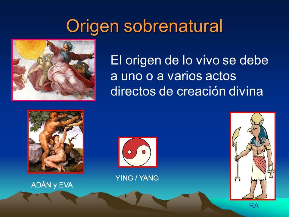 Origen sobrenatural El origen de lo vivo se debe a uno o a varios actos directos de creación divina.