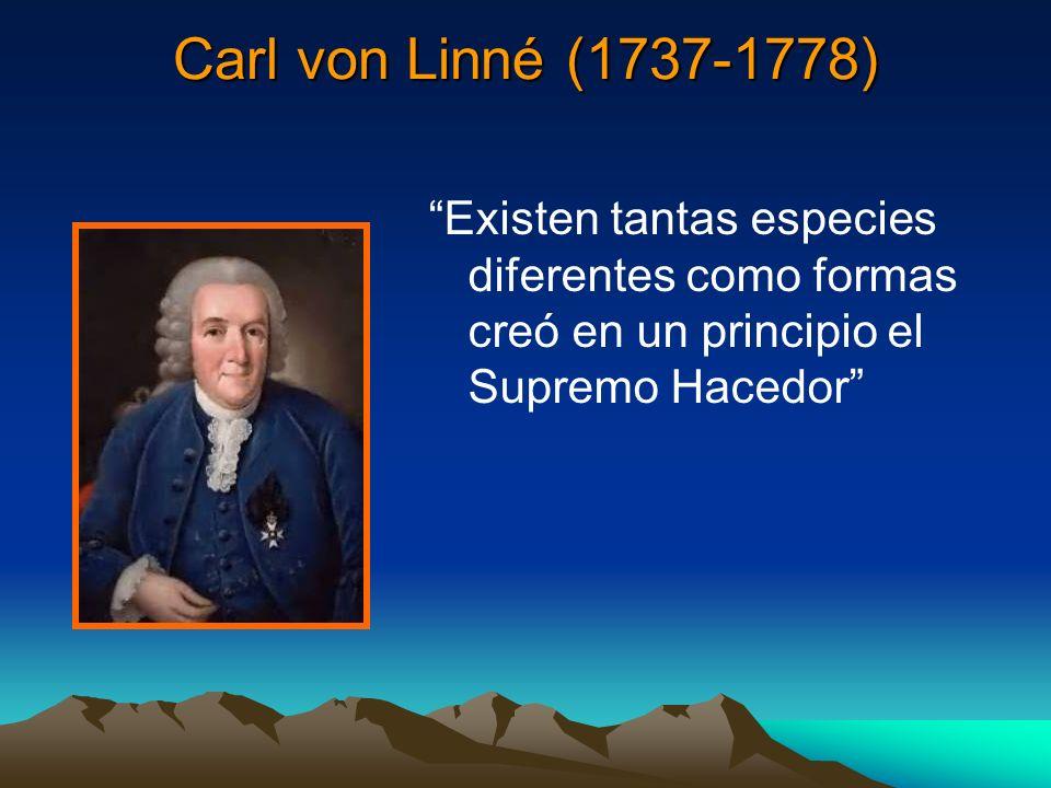 Carl von Linné (1737-1778) Existen tantas especies diferentes como formas creó en un principio el Supremo Hacedor