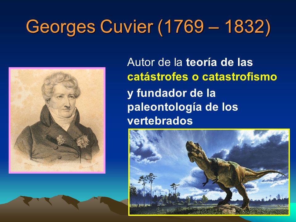 Georges Cuvier (1769 – 1832) Autor de la teoría de las catástrofes o catastrofismo. y fundador de la paleontología de los vertebrados.