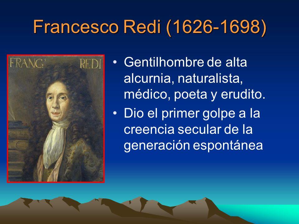 Francesco Redi (1626-1698) Gentilhombre de alta alcurnia, naturalista, médico, poeta y erudito.
