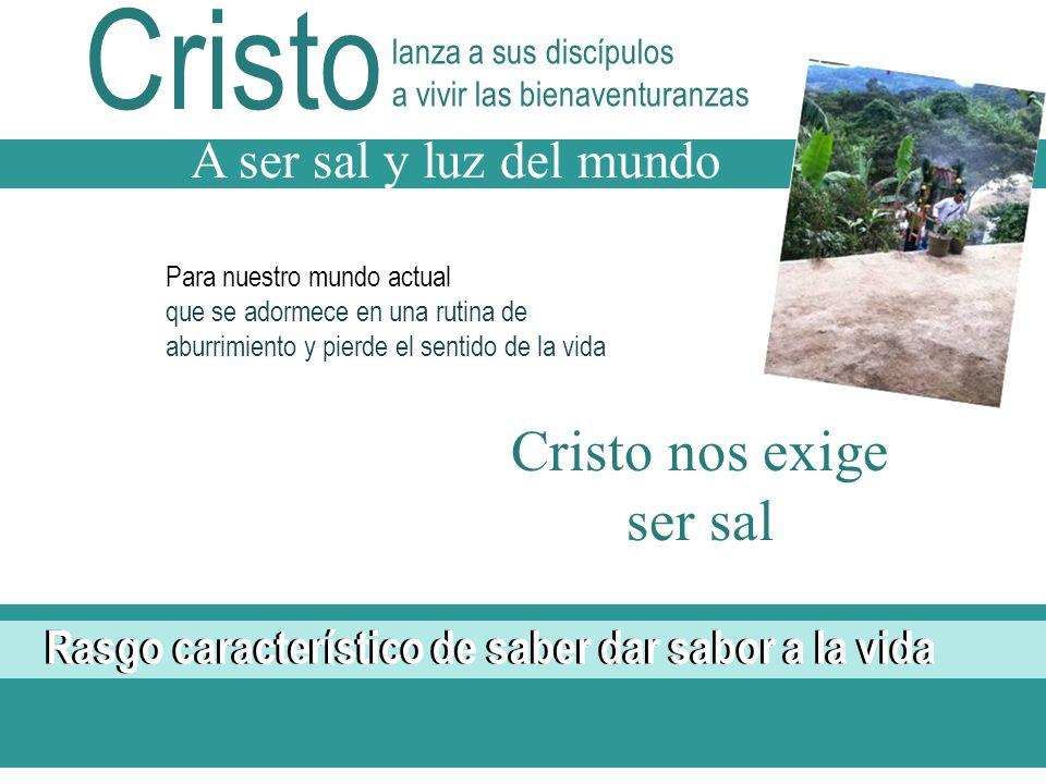 Cristo Cristo nos exige ser sal A ser sal y luz del mundo