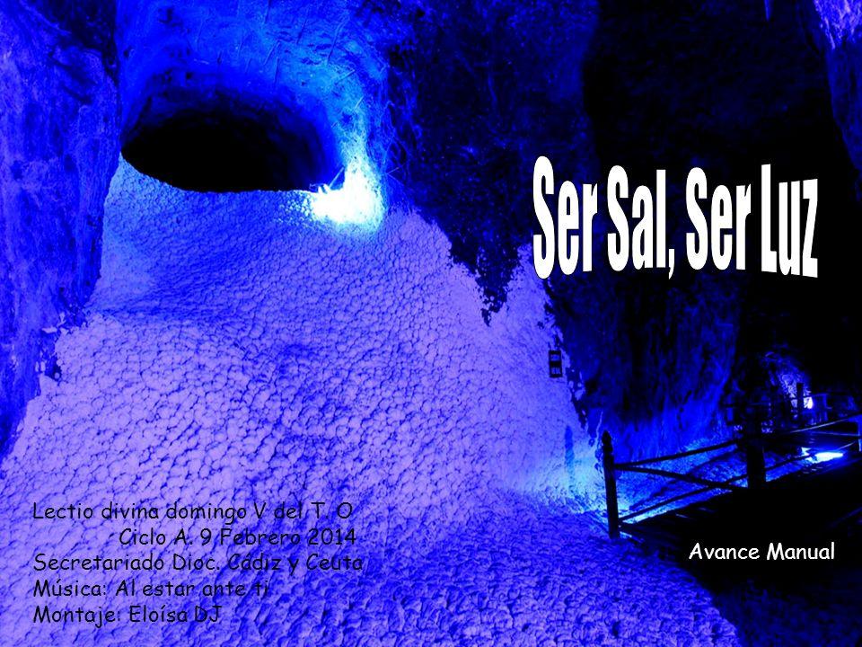 Ser Sal, Ser Luz