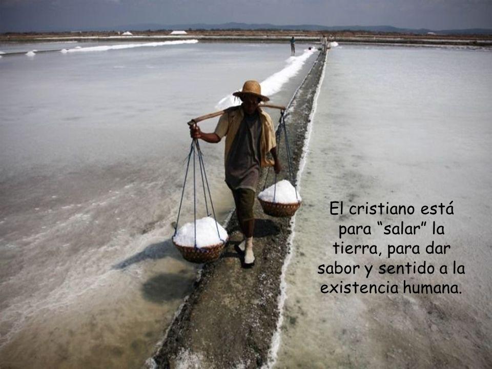 El cristiano está para salar la tierra, para dar sabor y sentido a la existencia humana.