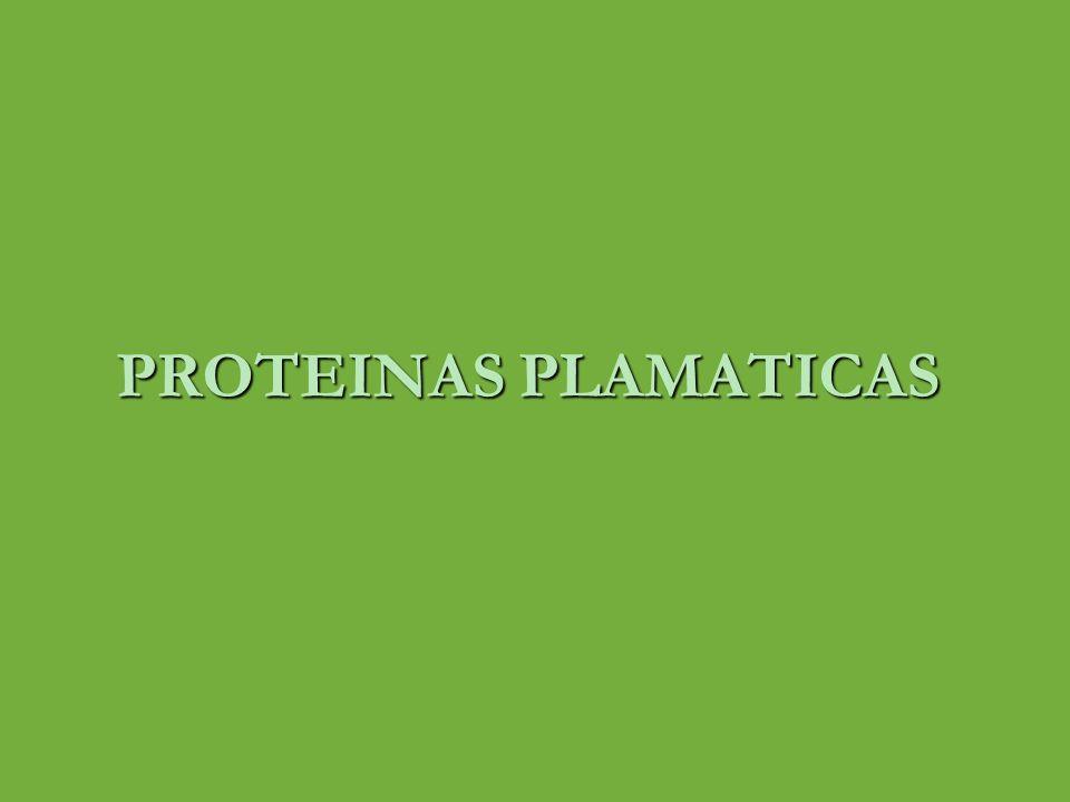 PROTEINAS PLAMATICAS