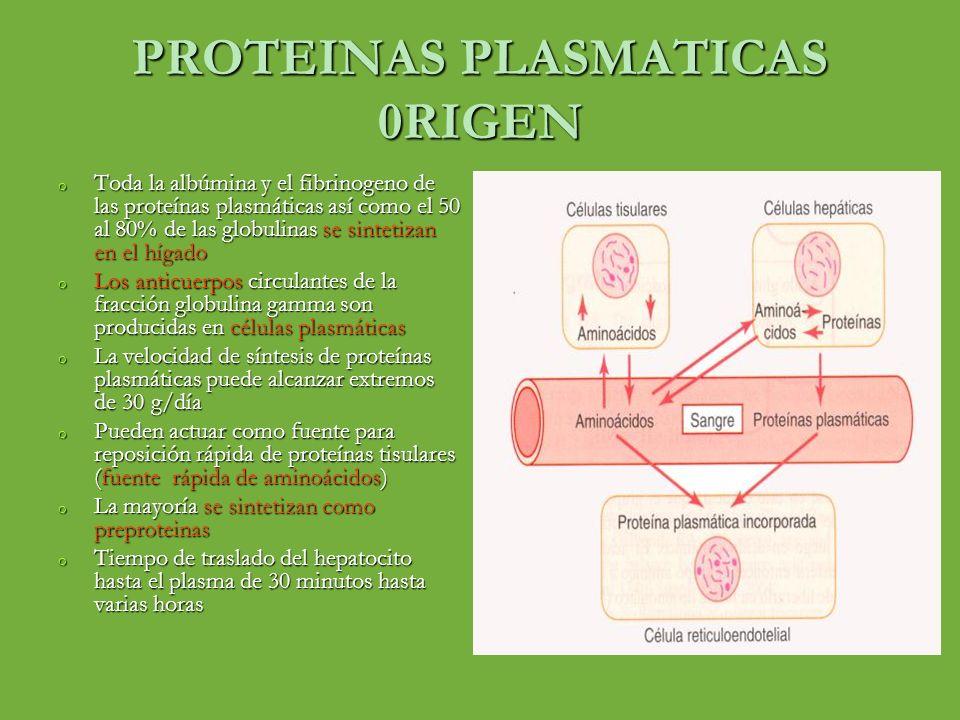PROTEINAS PLASMATICAS 0RIGEN