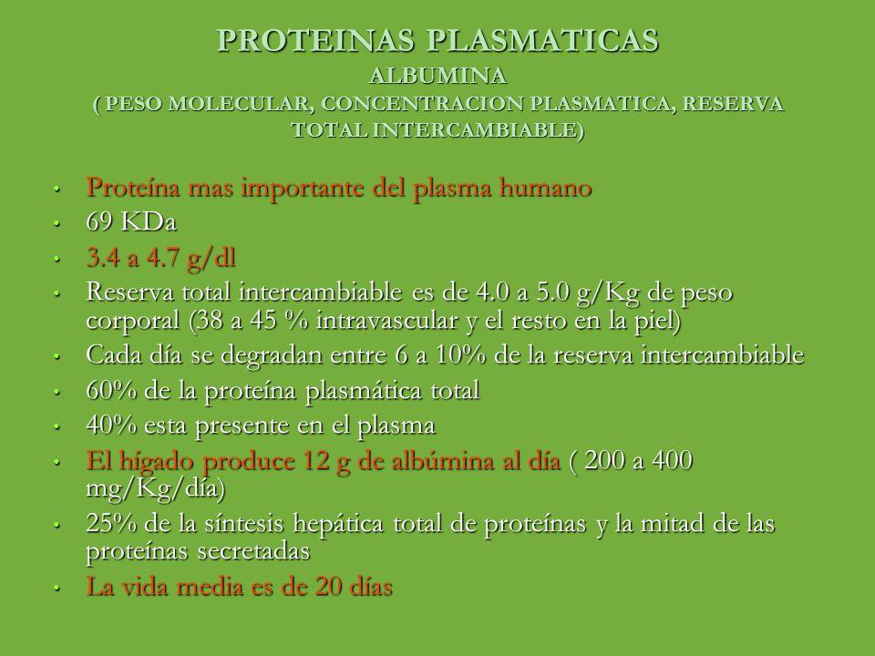PROTEINAS PLASMATICAS ALBUMINA ( PESO MOLECULAR, CONCENTRACION PLASMATICA, RESERVA TOTAL INTERCAMBIABLE)