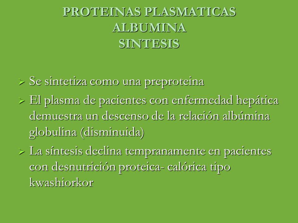 PROTEINAS PLASMATICAS ALBUMINA SINTESIS