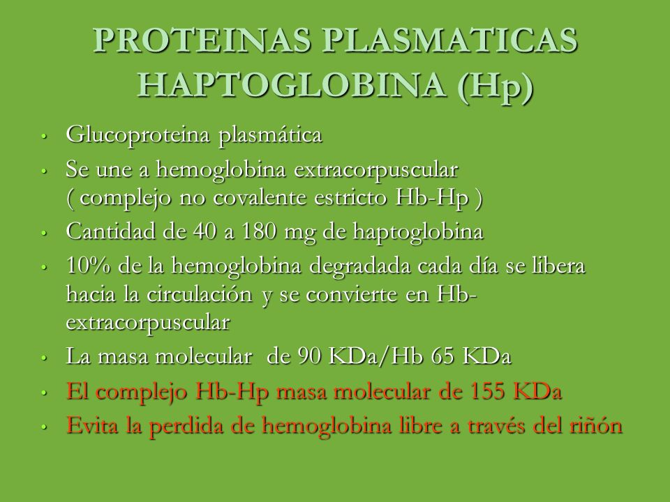 PROTEINAS PLASMATICAS HAPTOGLOBINA (Hp)