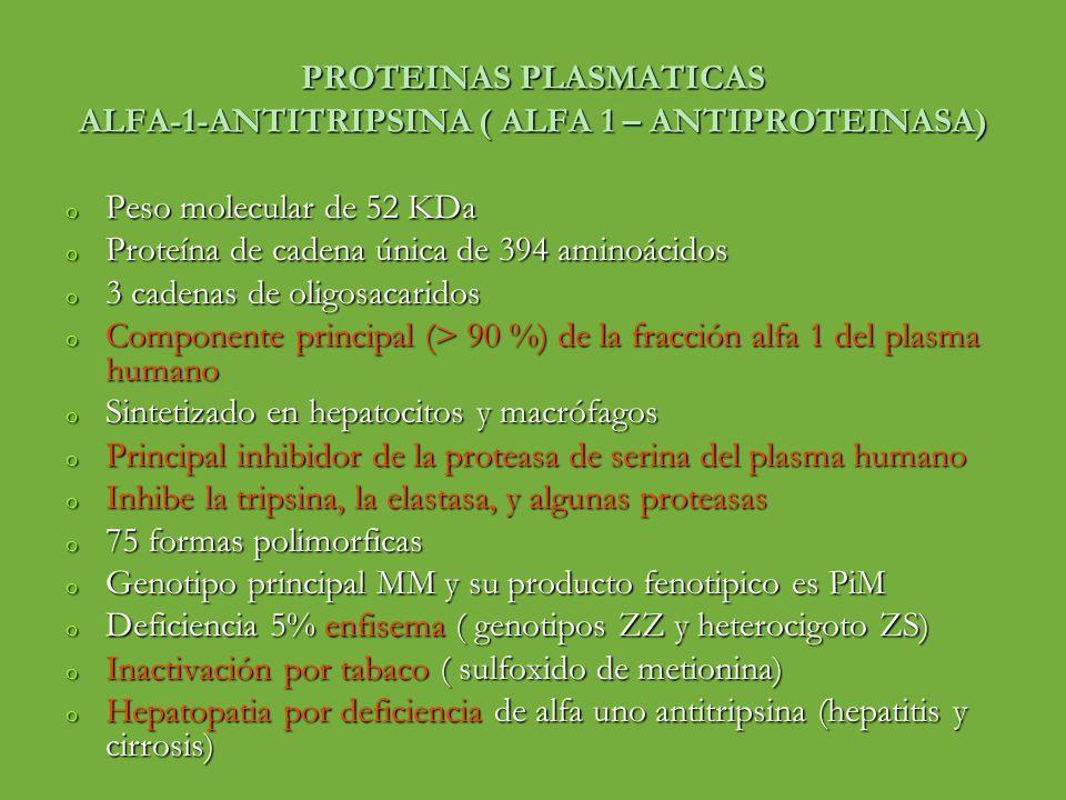 PROTEINAS PLASMATICAS ALFA-1-ANTITRIPSINA ( ALFA 1 – ANTIPROTEINASA)