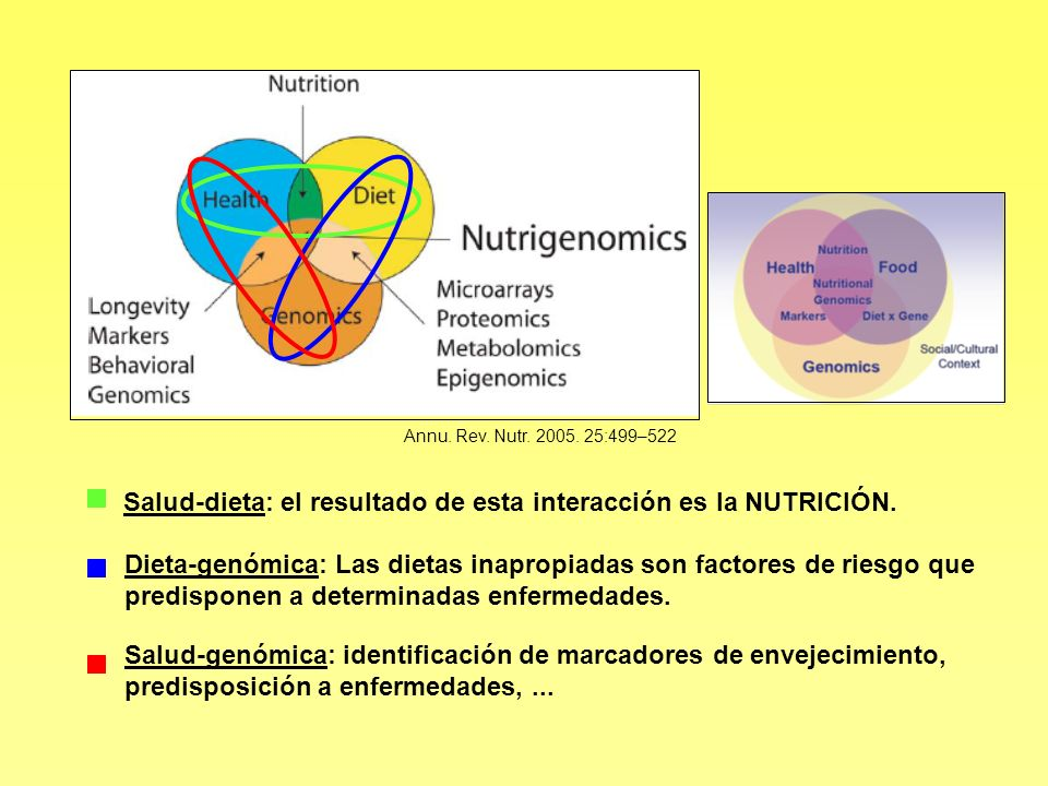 Salud-dieta: el resultado de esta interacción es la NUTRICIÓN.