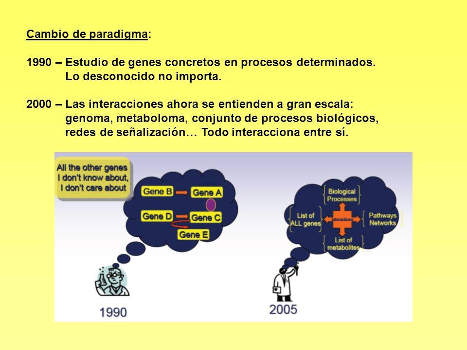 1990 – Estudio de genes concretos en procesos determinados.