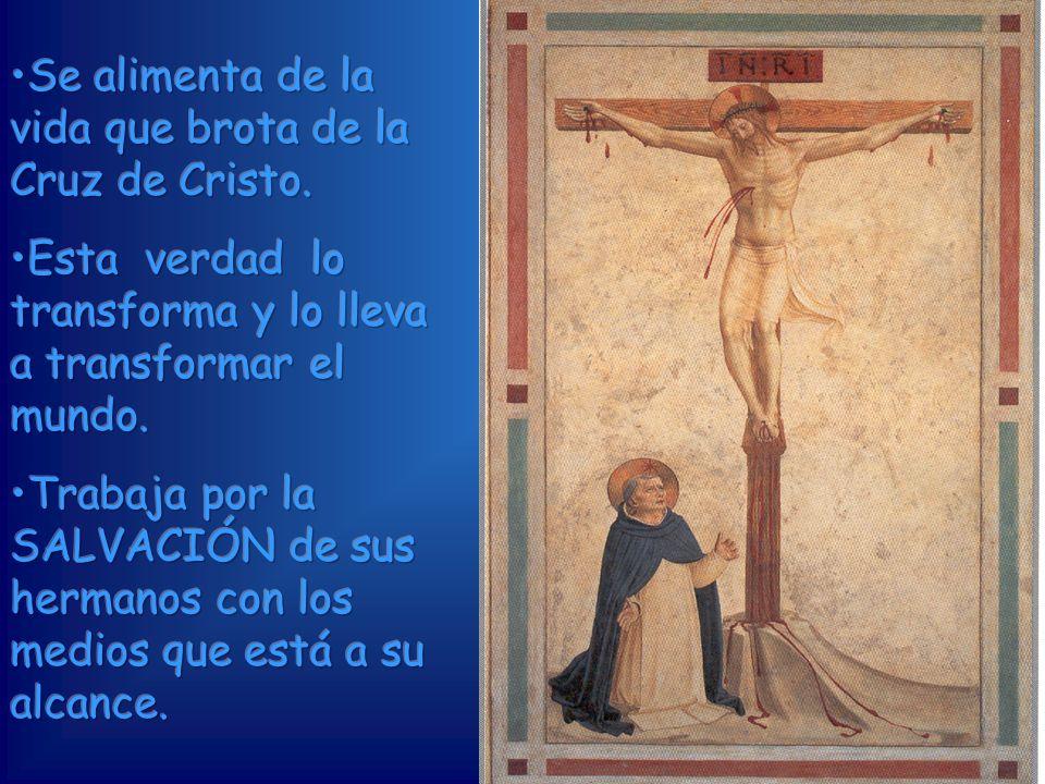 Se alimenta de la vida que brota de la Cruz de Cristo.