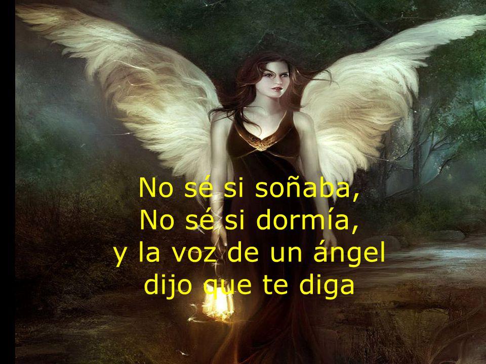 No sé si soñaba, No sé si dormía, y la voz de un ángel dijo que te diga