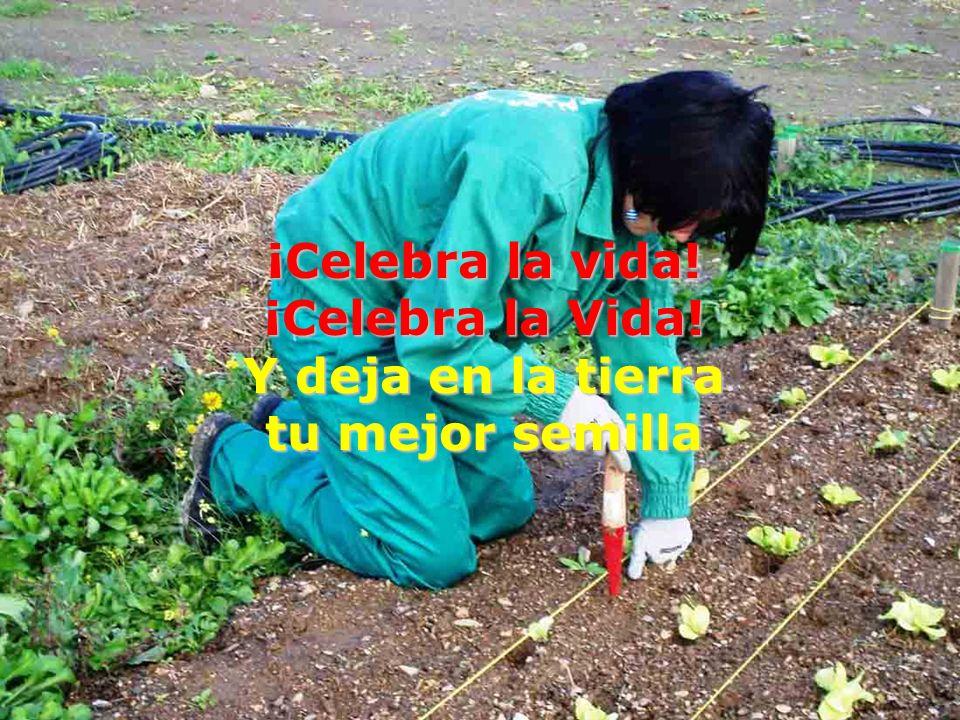 ¡Celebra la vida! ¡Celebra la Vida! Y deja en la tierra tu mejor semilla