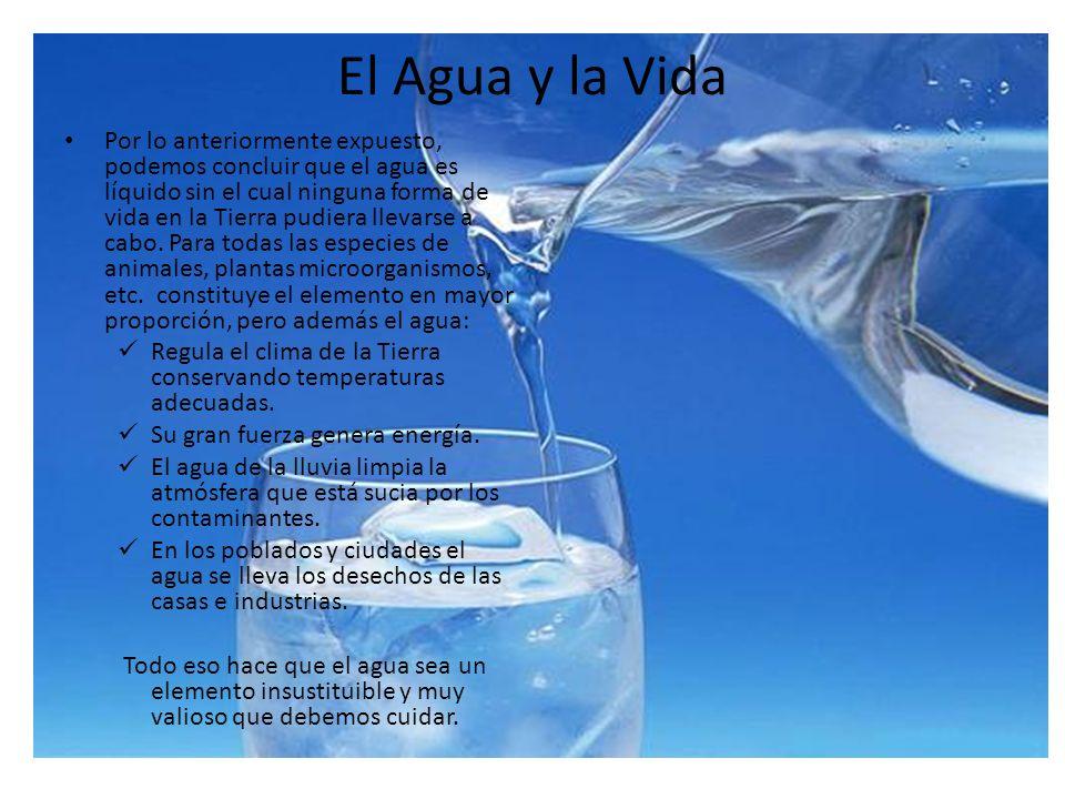 El Agua y la Vida