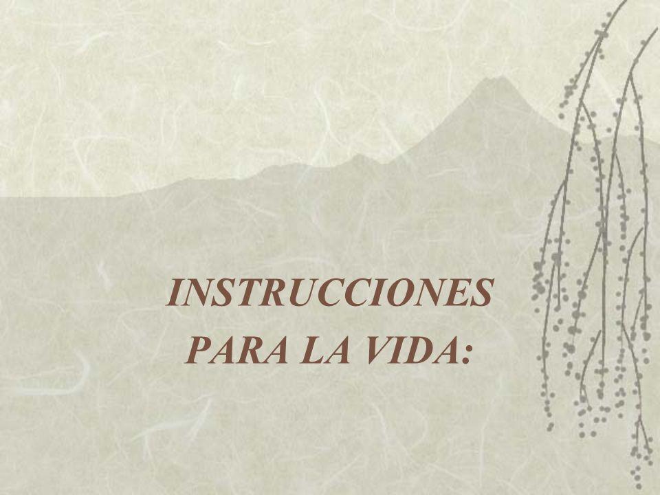 INSTRUCCIONES PARA LA VIDA: