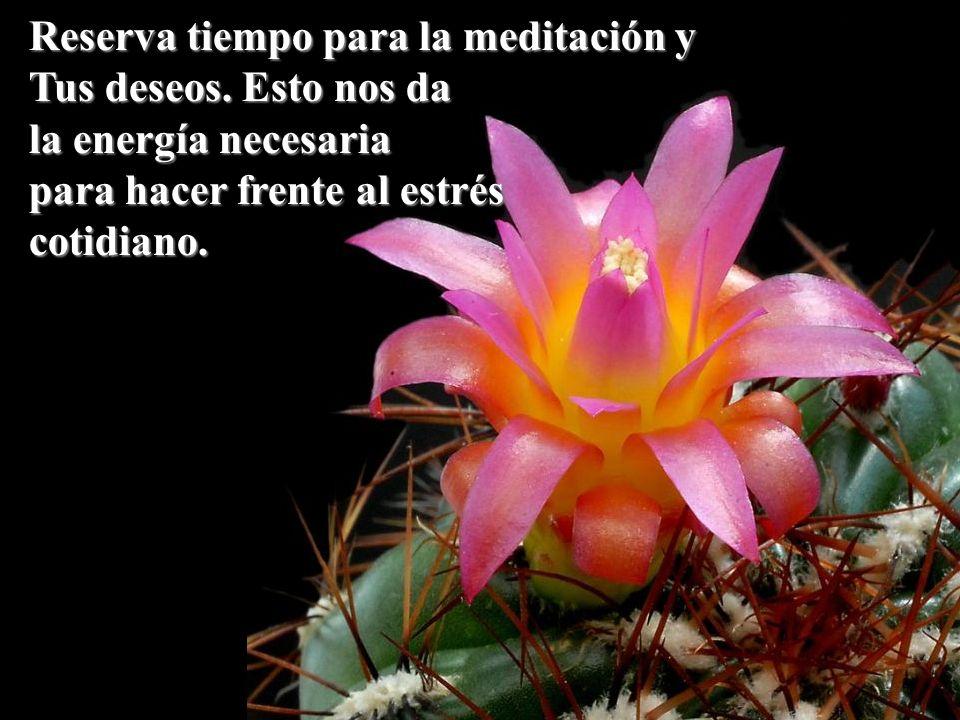 Reserva tiempo para la meditación y