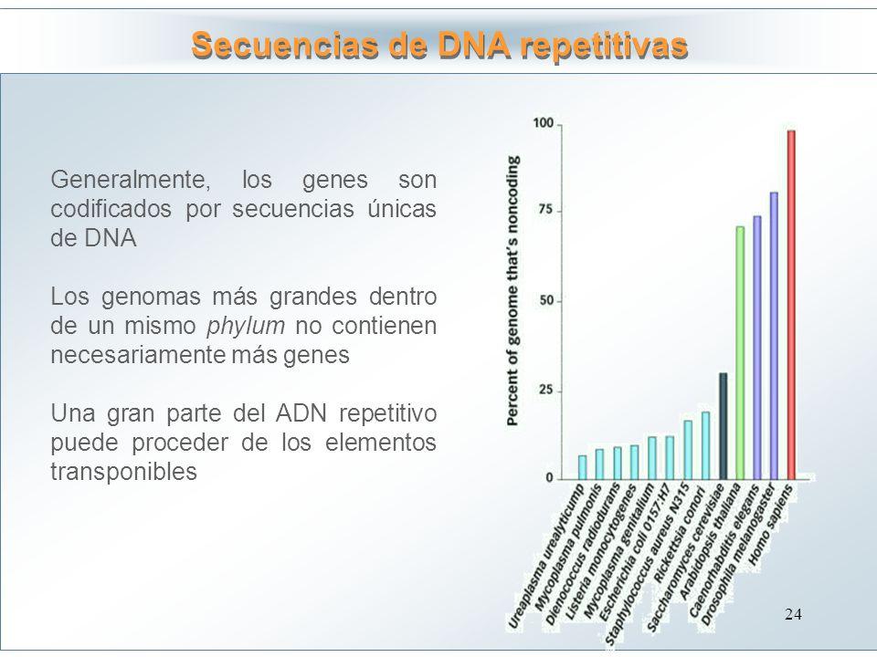 Secuencias de DNA repetitivas