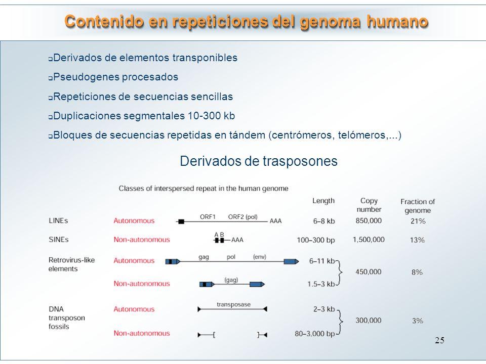 Contenido en repeticiones del genoma humano