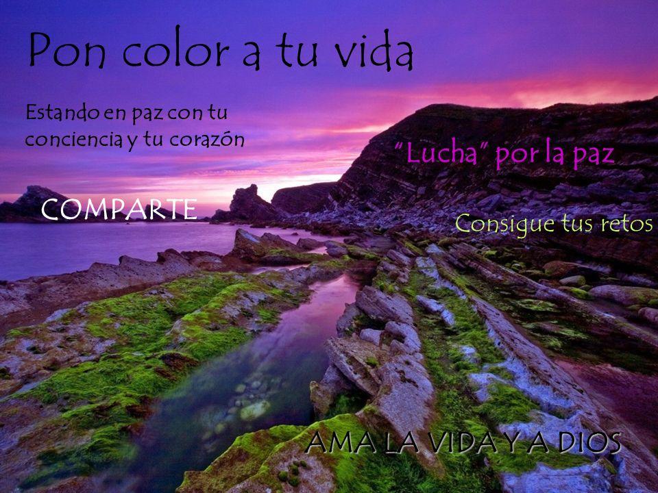Pon color a tu vida Lucha por la paz COMPARTE AMA LA VIDA Y A DIOS