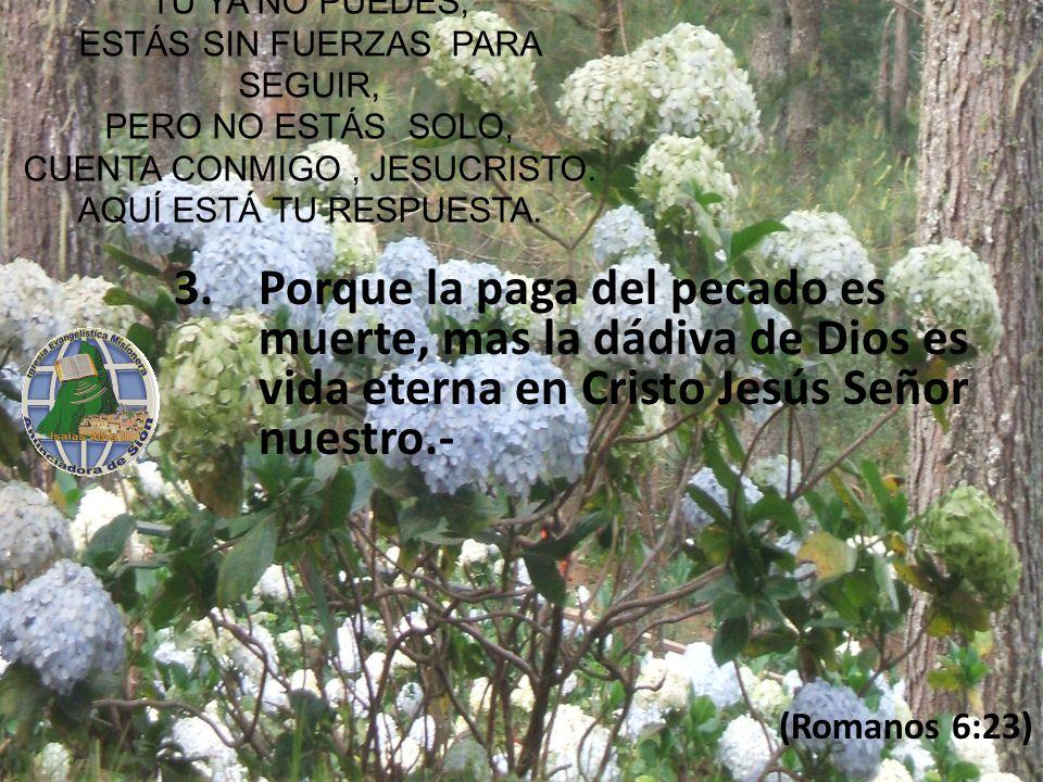 Porque la paga del pecado es muerte, mas la dádiva de Dios es vida eterna en Cristo Jesús Señor nuestro.-