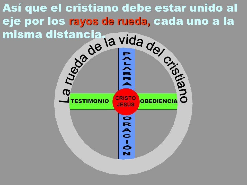 La rueda de la vida del cristiano