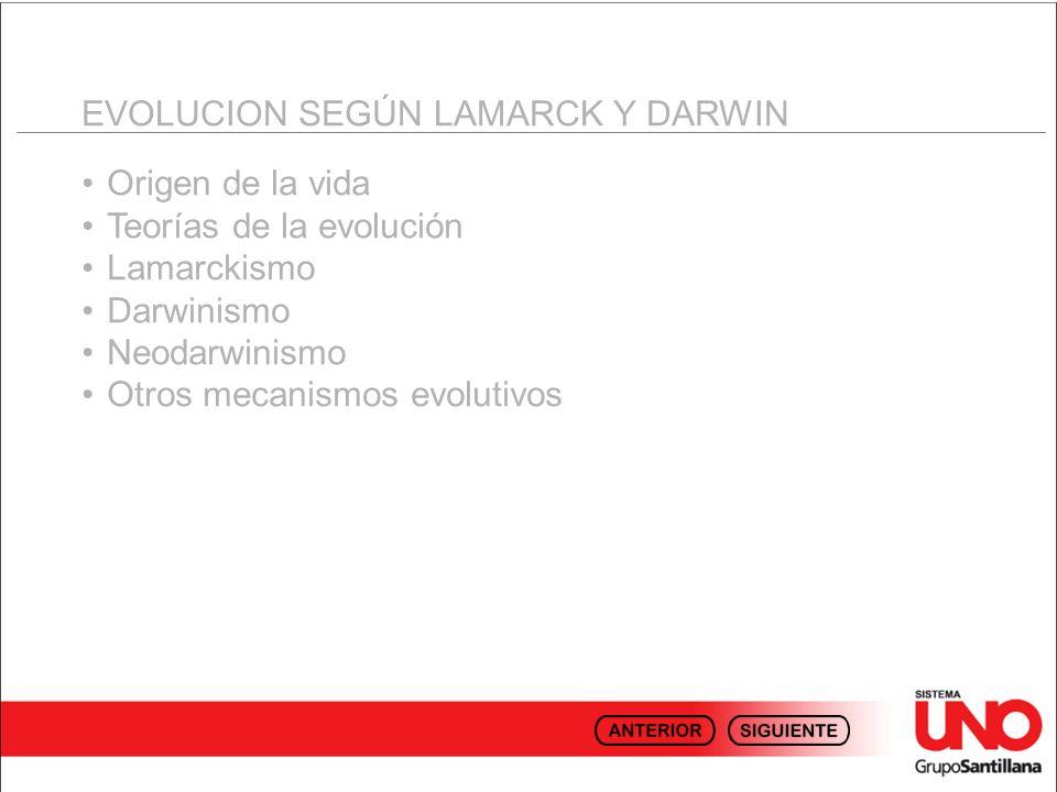 EVOLUCION SEGÚN LAMARCK Y DARWIN