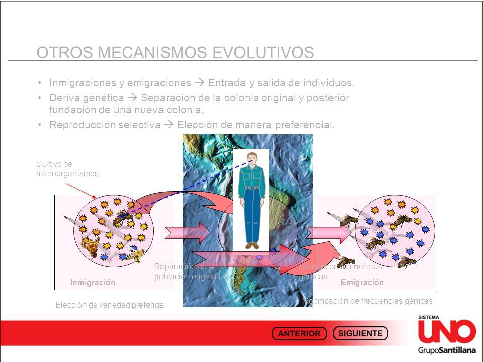 OTROS MECANISMOS EVOLUTIVOS