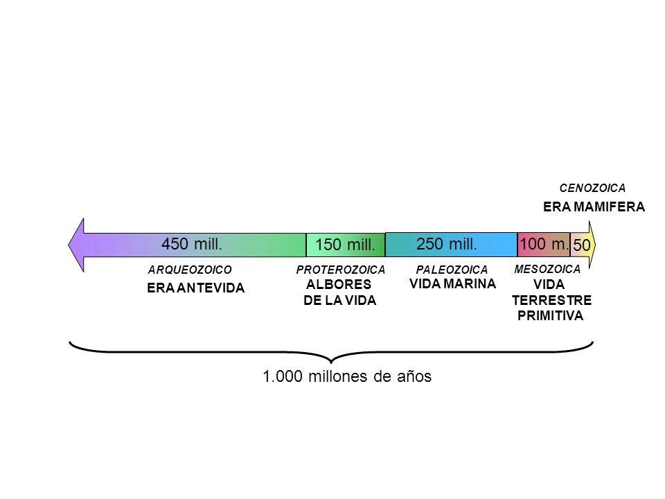 450 mill. 150 mill. 250 mill. 100 m. 50 1.000 millones de años
