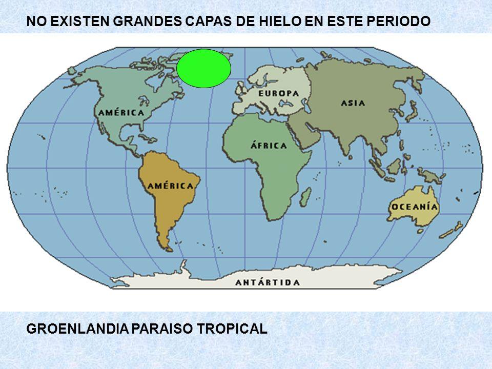 NO EXISTEN GRANDES CAPAS DE HIELO EN ESTE PERIODO