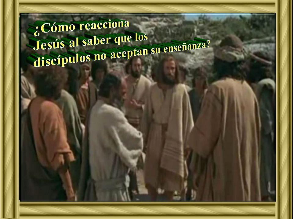 ¿Cómo reacciona Jesús al saber que los discípulos no aceptan su enseñanza