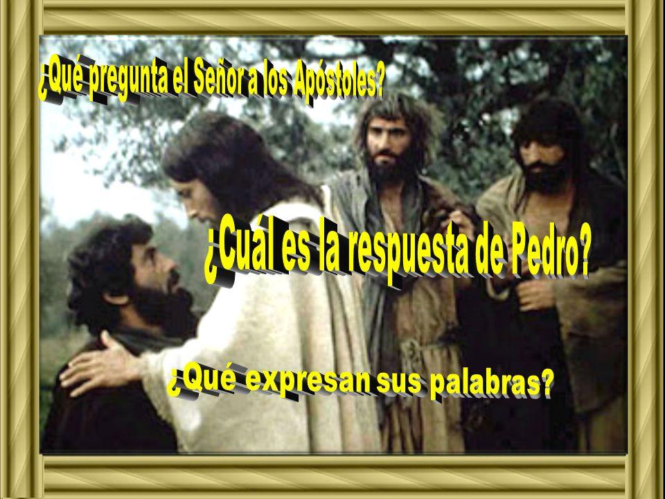 ¿Qué pregunta el Señor a los Apóstoles