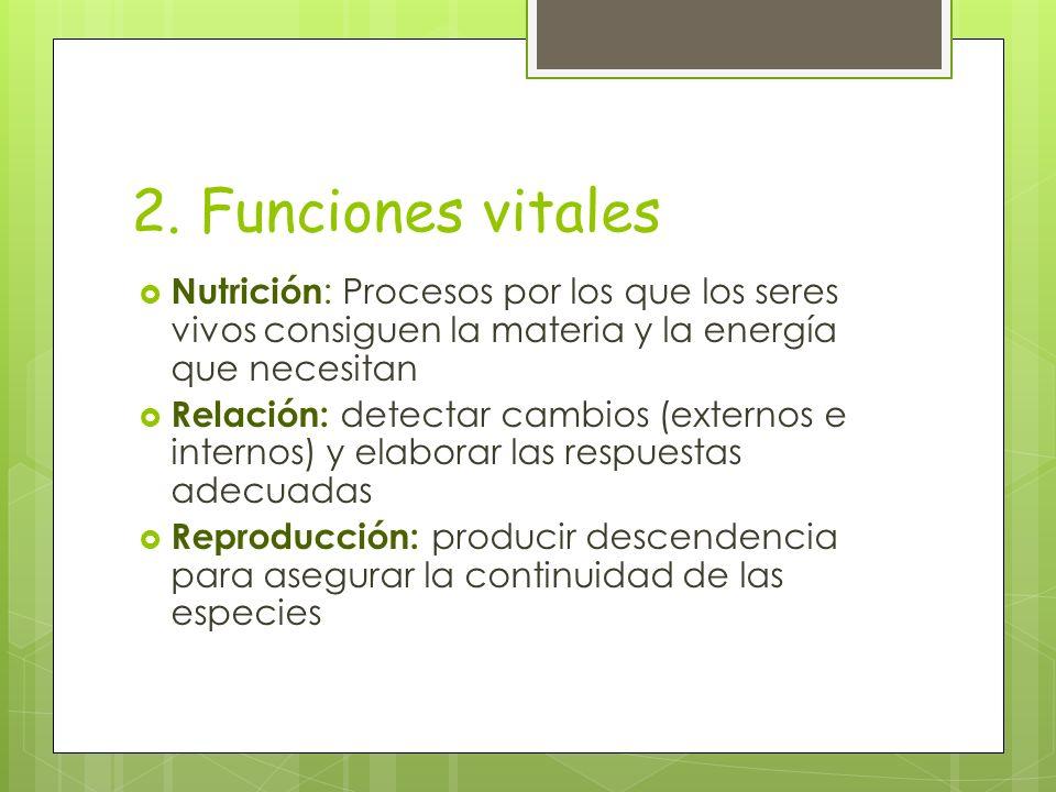2. Funciones vitales Nutrición: Procesos por los que los seres vivos consiguen la materia y la energía que necesitan.