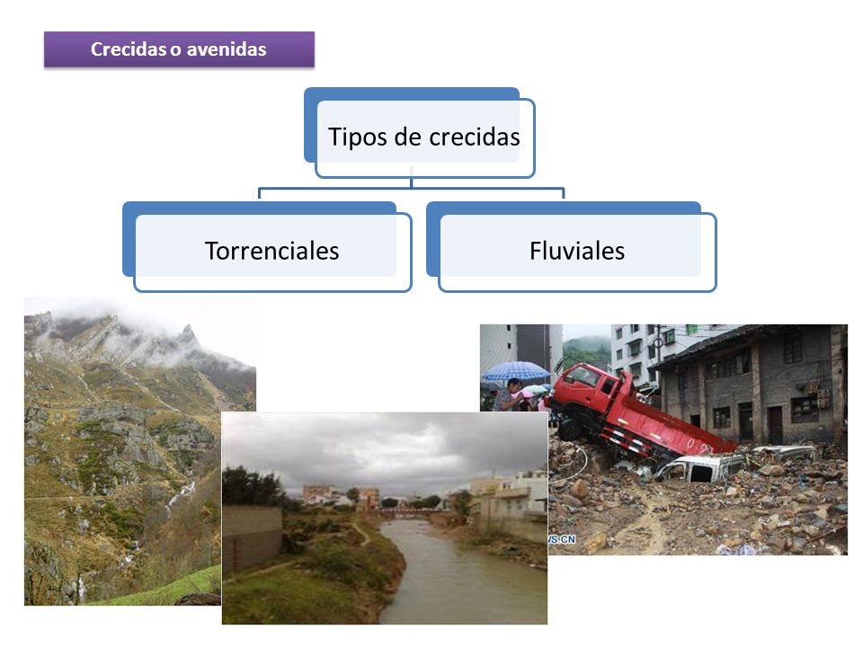 Crecidas o avenidas Tipos de crecidas Torrenciales Fluviales