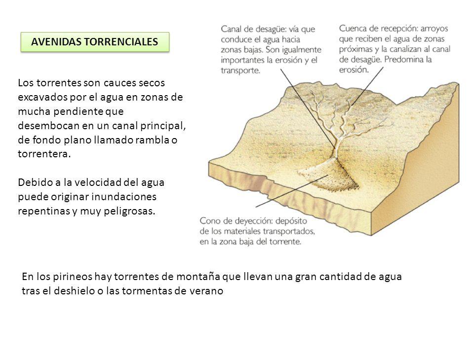 AVENIDAS TORRENCIALES