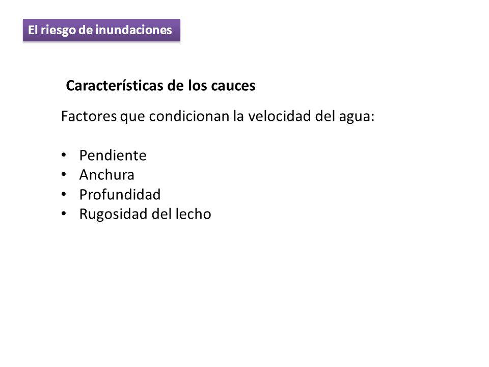 Características de los cauces