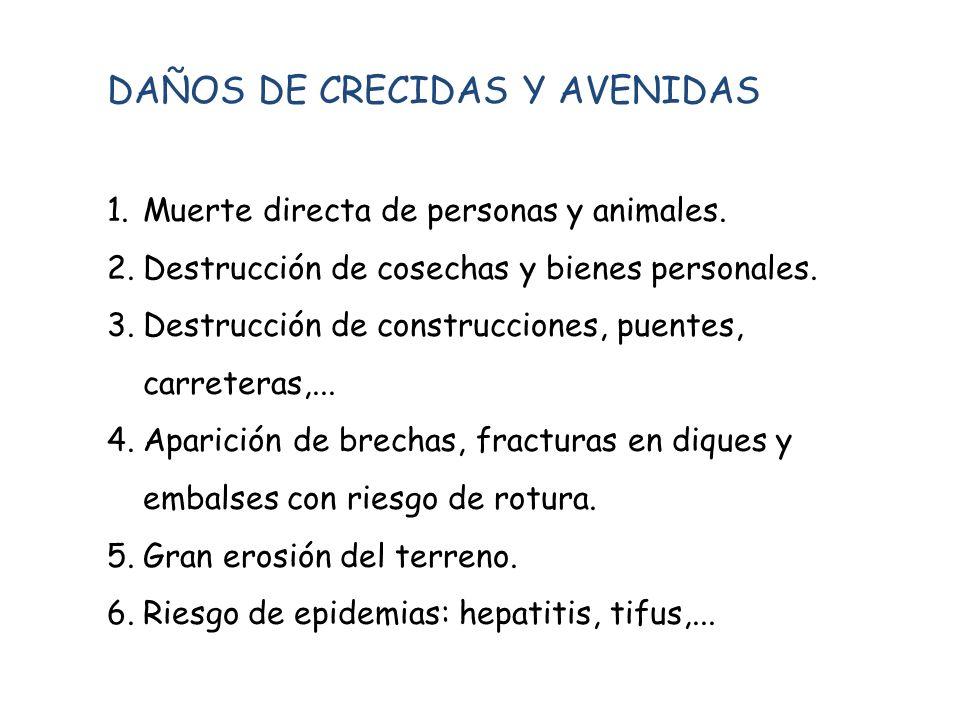 DAÑOS DE CRECIDAS Y AVENIDAS