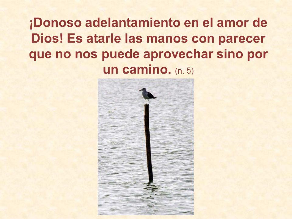 ¡Donoso adelantamiento en el amor de Dios