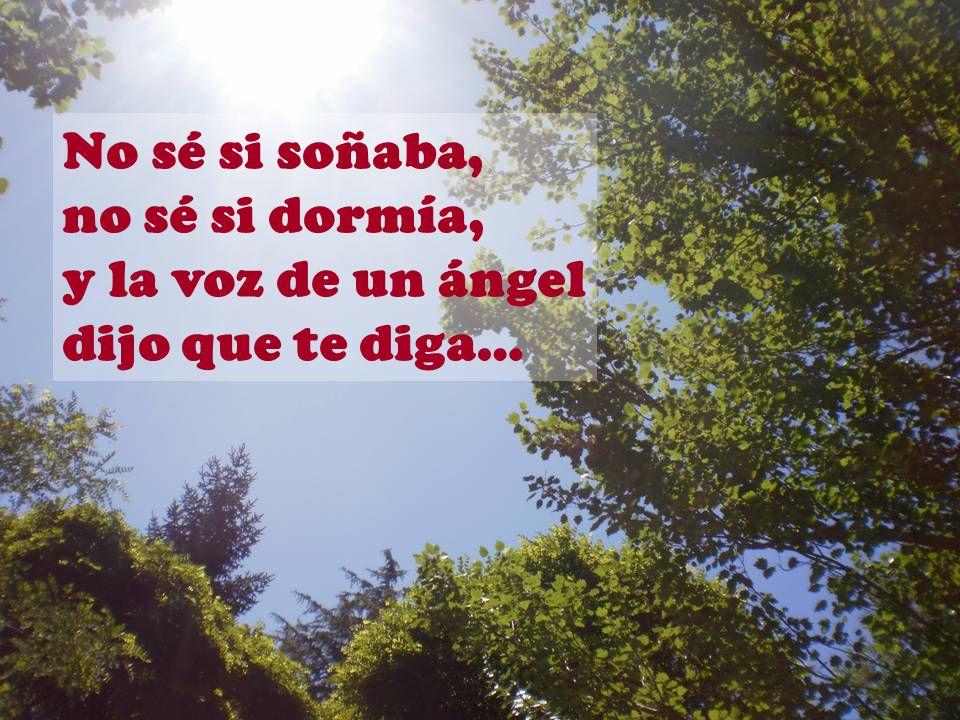 No sé si soñaba, no sé si dormía, y la voz de un ángel dijo que te diga…