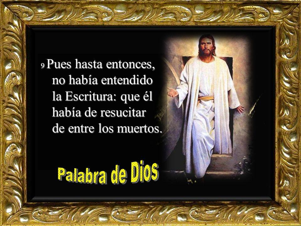 9 Pues hasta entonces, no había entendido la Escritura: que él había de resucitar de entre los muertos.
