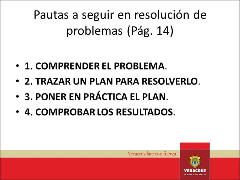 Pautas a seguir en resolución de problemas (Pág. 14)