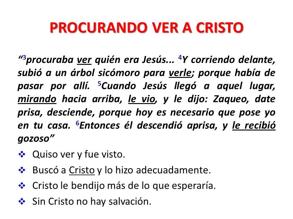 PROCURANDO VER A CRISTO