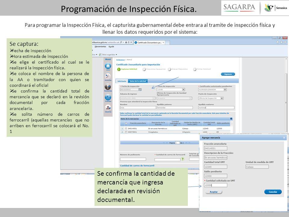 Programación de Inspección Física.