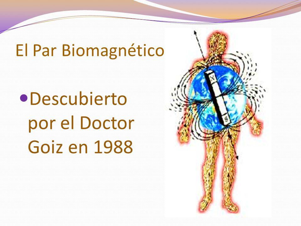 Descubierto por el Doctor Goiz en 1988
