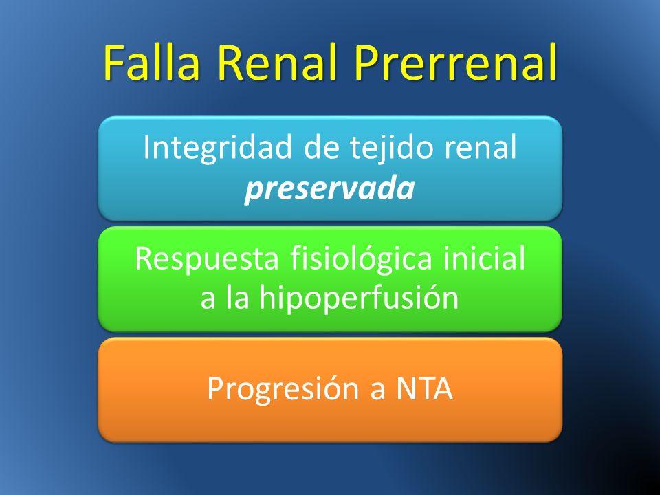 Falla Renal Prerrenal Integridad de tejido renal preservada