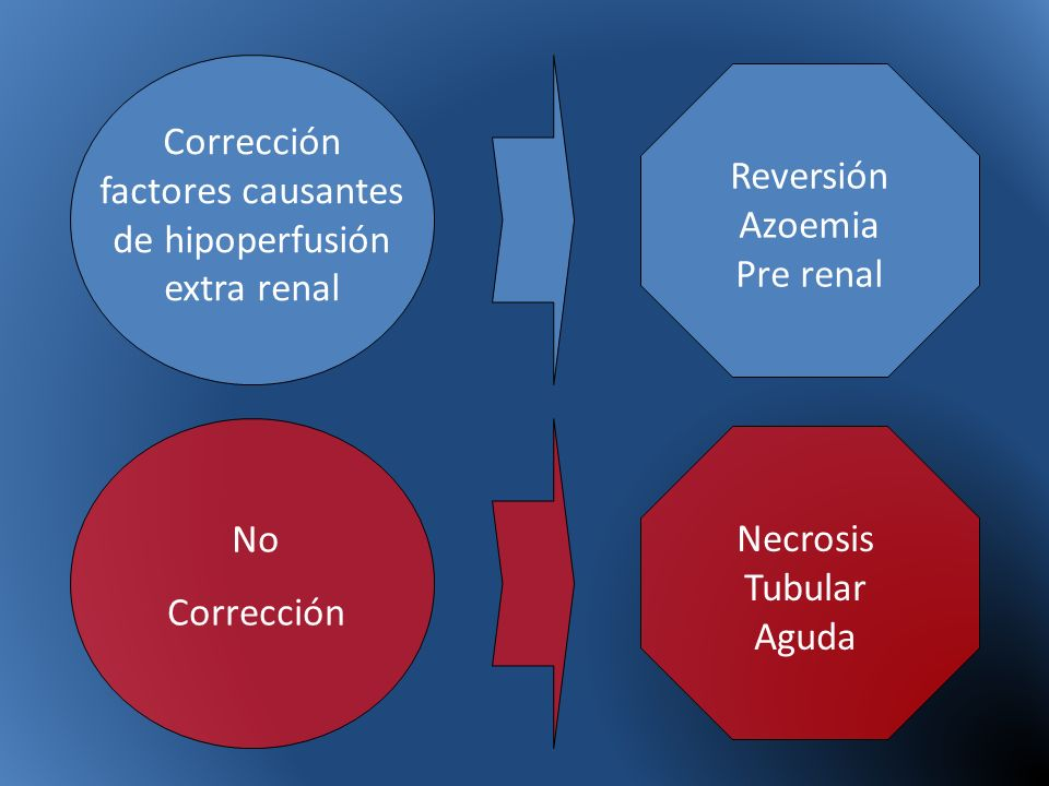 Corrección factores causantes de hipoperfusión extra renal