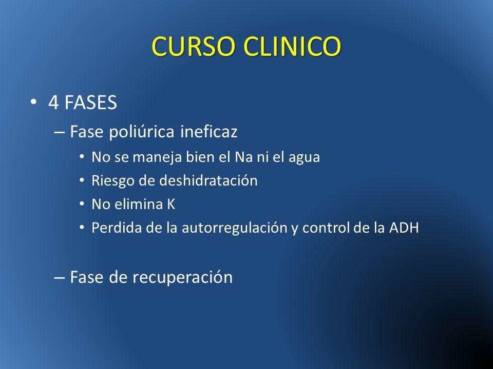 CURSO CLINICO 4 FASES Fase poliúrica ineficaz Fase de recuperación