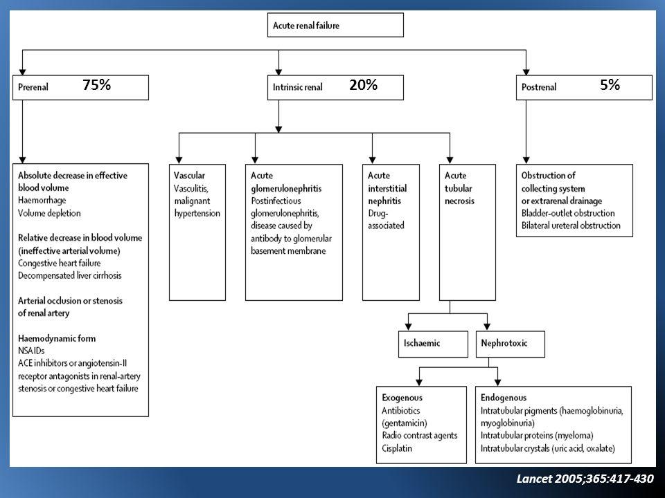 75% 20% 5% Lancet 2005;365:417-430