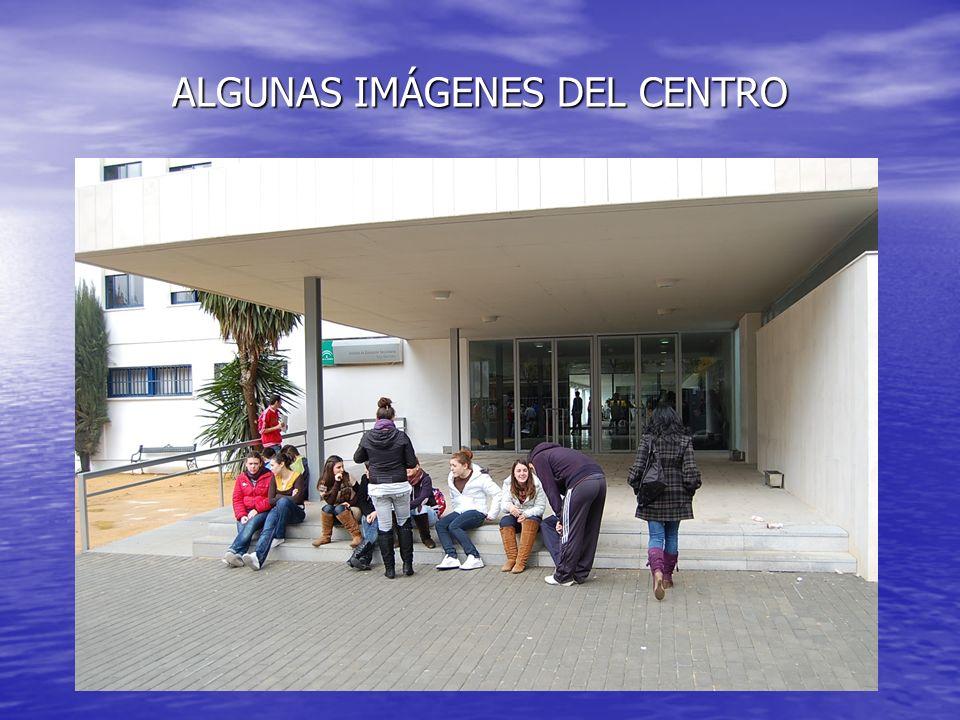 ALGUNAS IMÁGENES DEL CENTRO